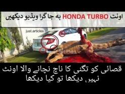 اونٹ بھاگتا ہوا ہونڈا ٹربو پر جا گرا || camel ran and drag on Honda Turbo